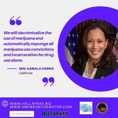 Kamala Harris Decriminalization Quote